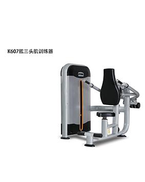 康乐佳 肱三头肌训练器 K607